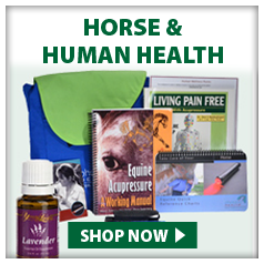 Horse and Human Health