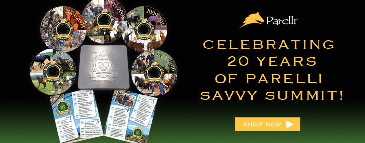 Savvy Summit 20 Years DVD